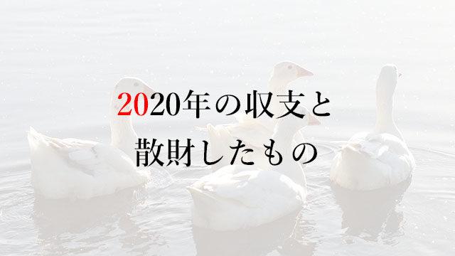 201230 2020年の収支と散財したもの